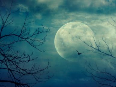 Terror at Twilight